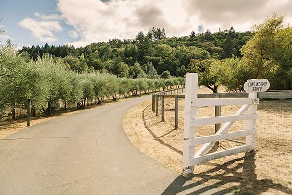 Long Meadow Ranch - Lands